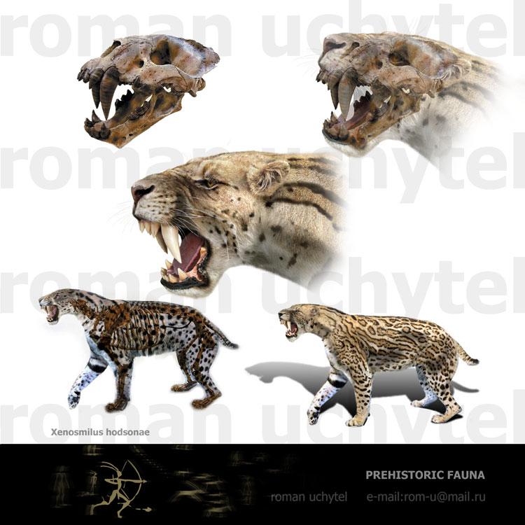 http://prehistoric.ucoz.ru/img/reconstr/Xenosmilus.jpg